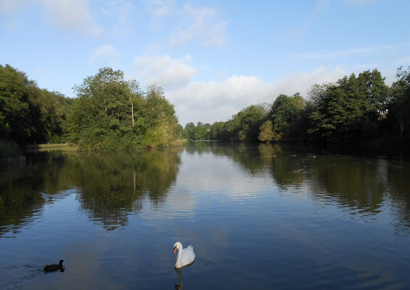 Maiden Erlegh Nature Reserve – Earley Town Council