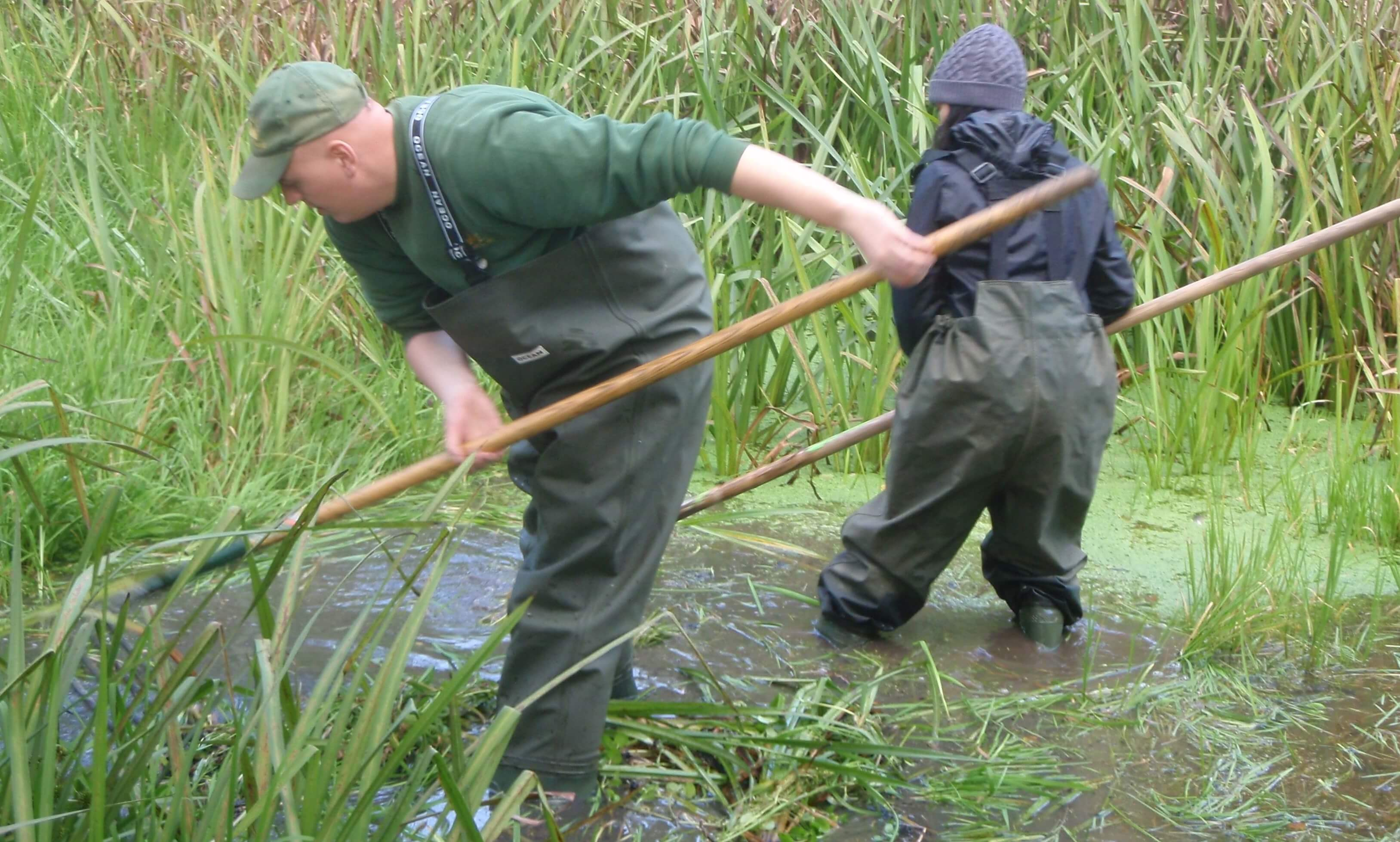 Volunteers with Park Ranger Team working at marefield Pond